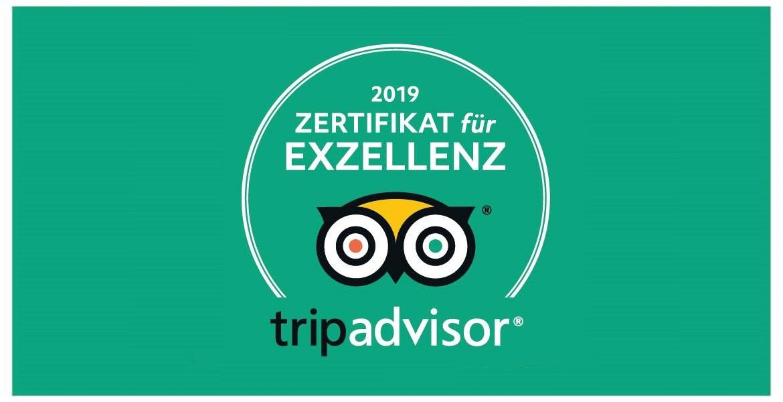 Zertifikat Für Exzellenz 2019
