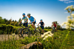 Kids-Mountainbike-Netz