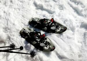 Schneeschuhwandern Willingen