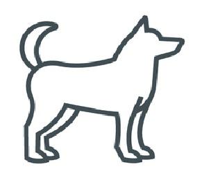 Hunde erlaubt